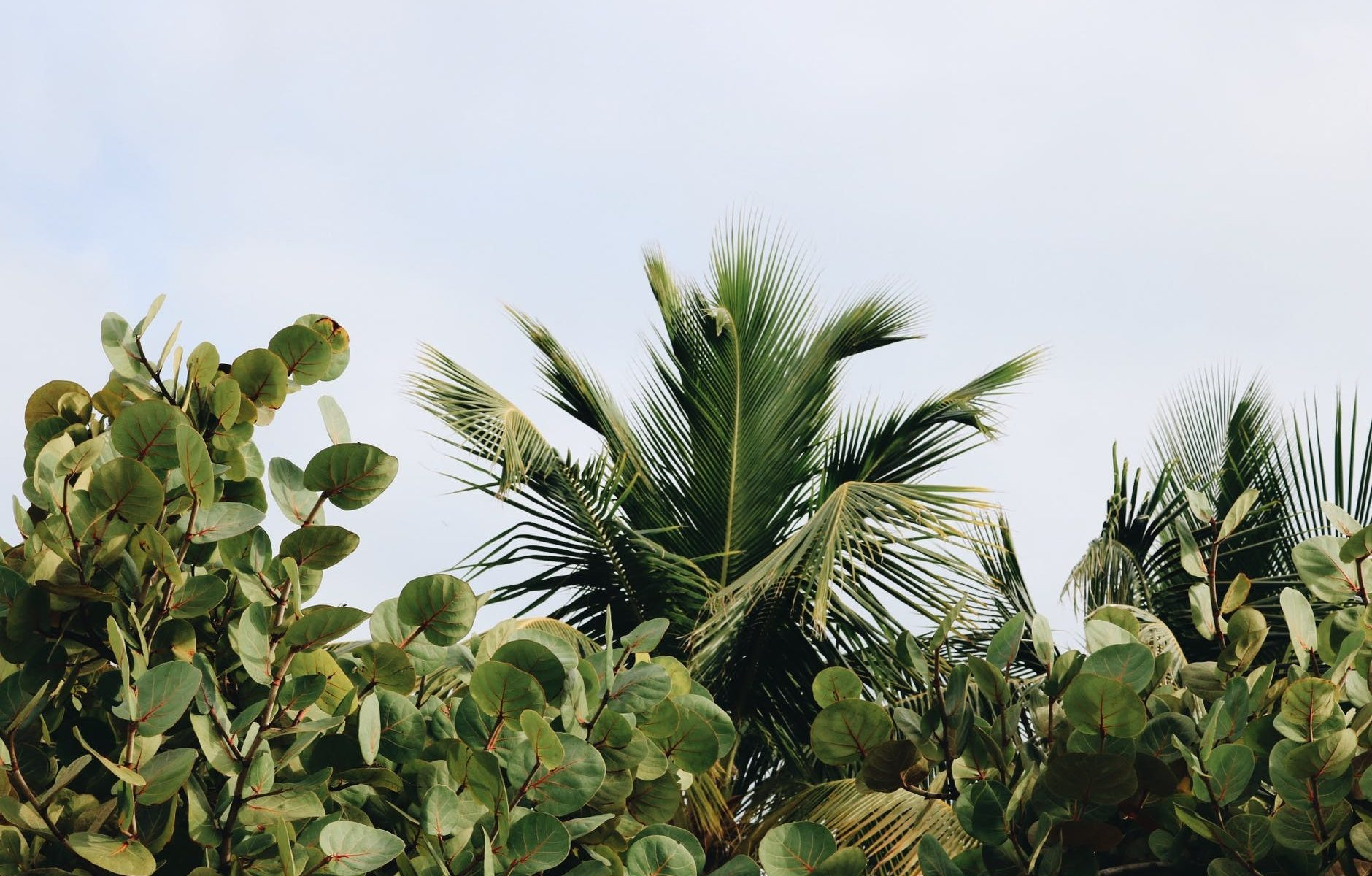 Mês de agosto © Pexels