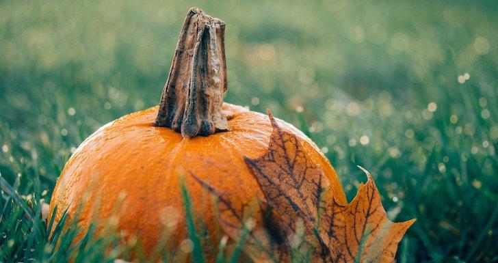 O Dia das Bruxas celebra-se na noite de 31 de outubro © Pixabay